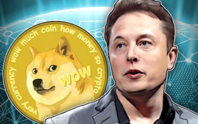 Criptovalute e Elon Musk, storie simili di utenti che ci credono davvero